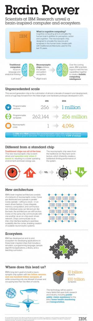 ibmsynapseinfographic