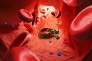 Malaria 6-nanotechnolo