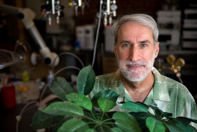 Prof D. Nocera df12556_79822