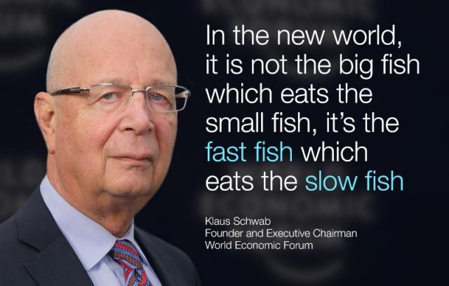 WEF KSC_fish2__