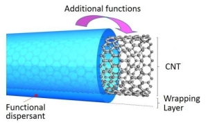 cARBON nANOTUBE wrappingcarb