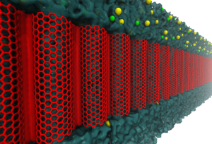Carbon Nanotube 072515 II Figure_1