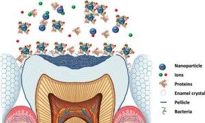 Dental nano II 072616 id39034