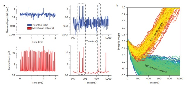 IBM 3 stochastic-neuron-correlations-learning