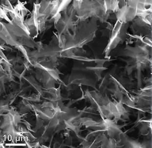 qds-from-coal-1006_gqd-2-rn-310x302