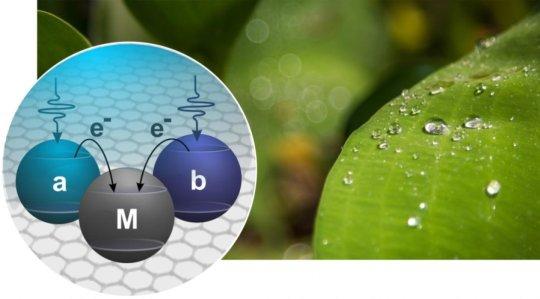 green-solar-cells-161130154310_1_540x360