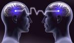 brain-quantum-2-b2b_wsf