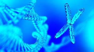 RNA Nano 3 RNA