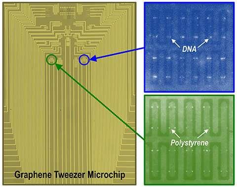Graphene Tweezers 182-researchersd