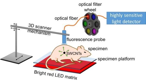Rice Optical Sensor CNTs 0523_SPECTRAL-1-web-txhgun