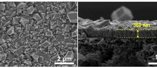 metalorganic frameworks petrochems
