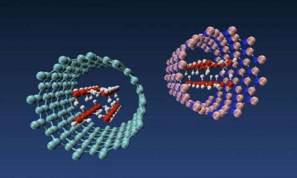 nanotubeschange water Rice U
