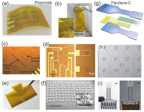 Graphene Bioelectrics id50987_1