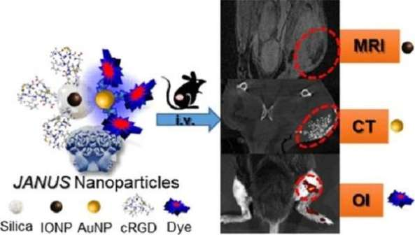 nanoplatform for tumor diagnosis