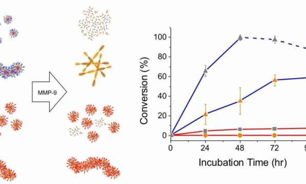 Sensing Nanomaterials newpaperprov