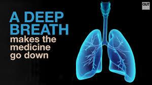 Deep Breath download