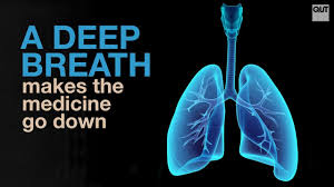 Deep Breath download