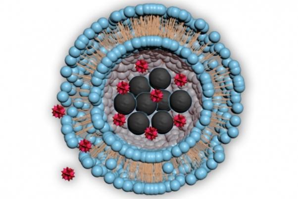 MIT-Nanomaterial-Drug-Delivery-01_0