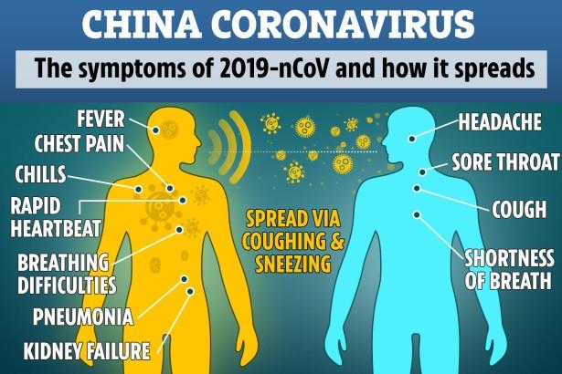 Corona 2 DD-COMPOSITE-CORONAVIRUS-GRAPHIC-2
